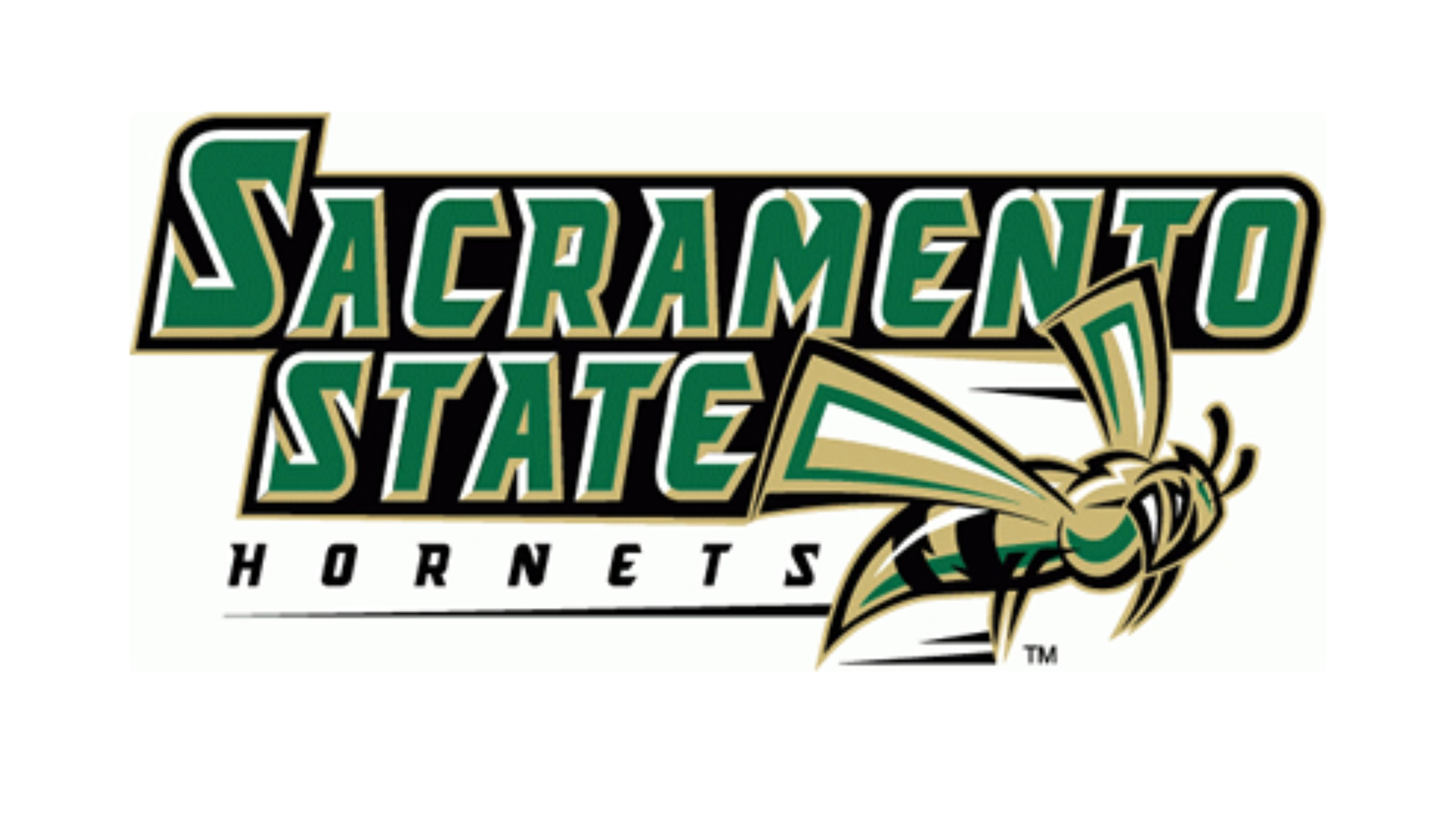 CSU Sacramento Mascot