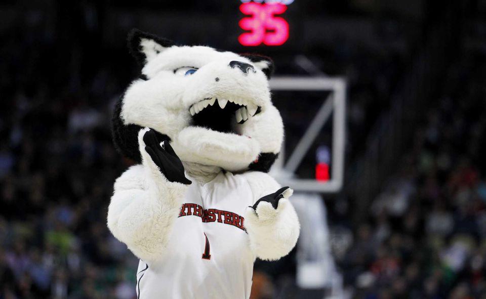 Northeastern University Mascot