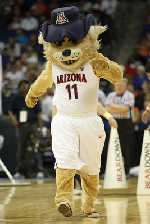 2011 University of Arizona Club Tennis Mascot
