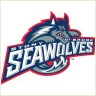 Stony Brook University Seawolves