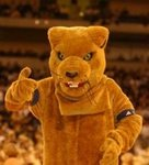 University of Pittsburgh Mascot (150)