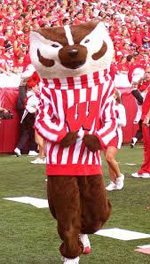 University of Wisconsin 2014 Badger