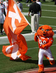 Sam Houston State University Mascot (150)