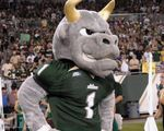 University of South Florida Club Tennis Team Mascot