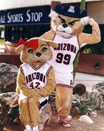 Univ of Arizona 2013 Mascot